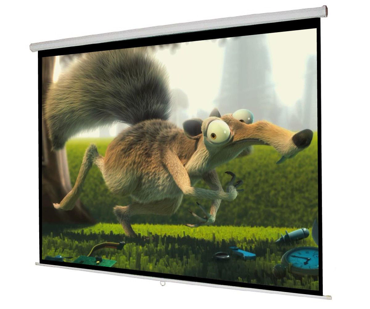 """Picture of 119"""" Manual Projector Screen 84"""" x 84"""" Pull Down Home Movie Theater"""