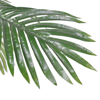 Picture of Artificial Plant Cycas Palm Tree 59""