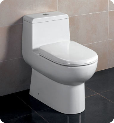 Picture of Fresca Antila One-Piece Dual Flush Toilet w/ Soft Close Seat